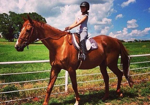 cadence-equestrian-3